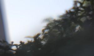 maus 06-14