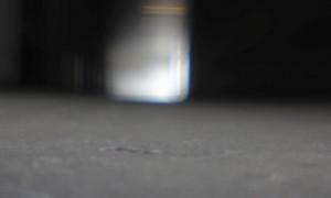 maus 06-22